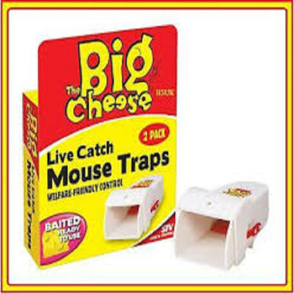 Picture of STV155 LIVE CATCH RTU MOUSE TRAP TWIN PK