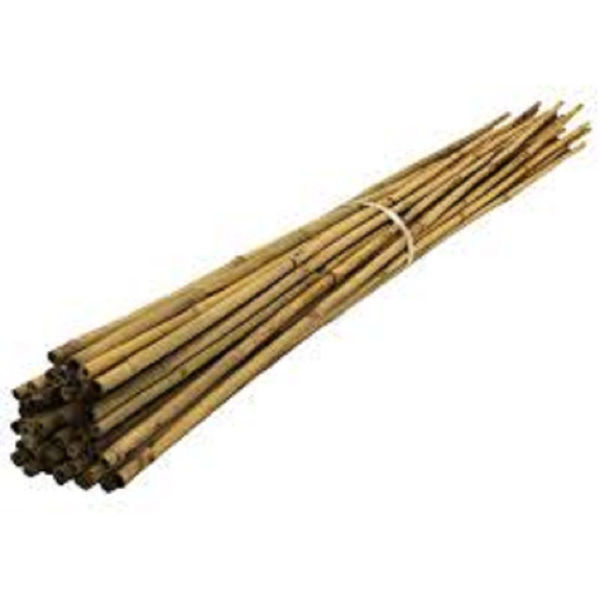 Picture of 6FT BAMBOO CANES 12-14MM