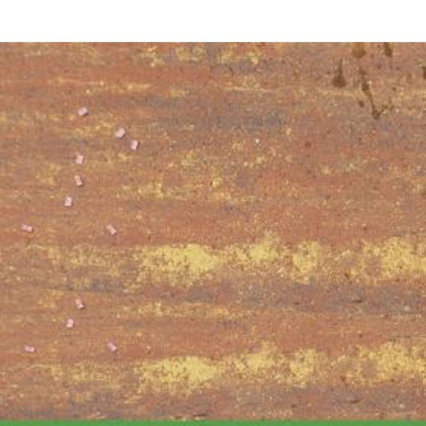 Picture of PAVING SLAB 16 X 16 X 40MM RUSTIC