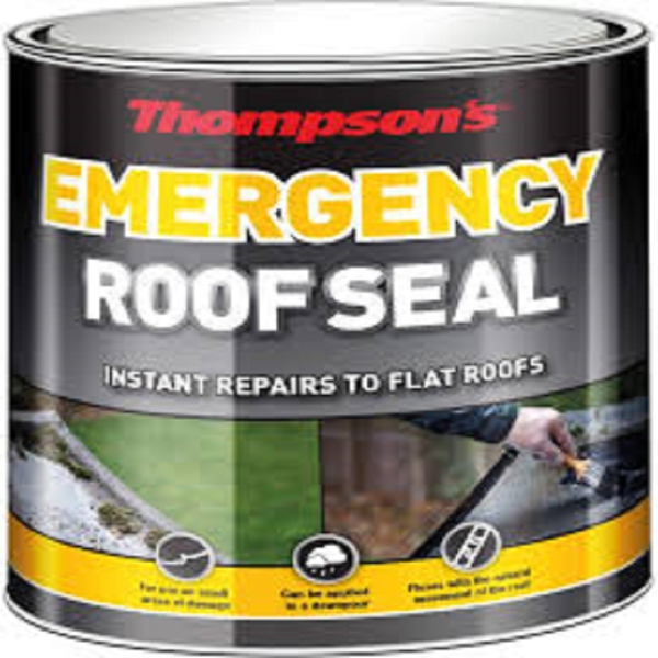 Picture of THOMPSONS EMERGENCY ROOF SEAL 2.5 LITRE