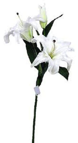 Picture of LILY ON STEM 3  FLOWERS WHITE/YELLOW