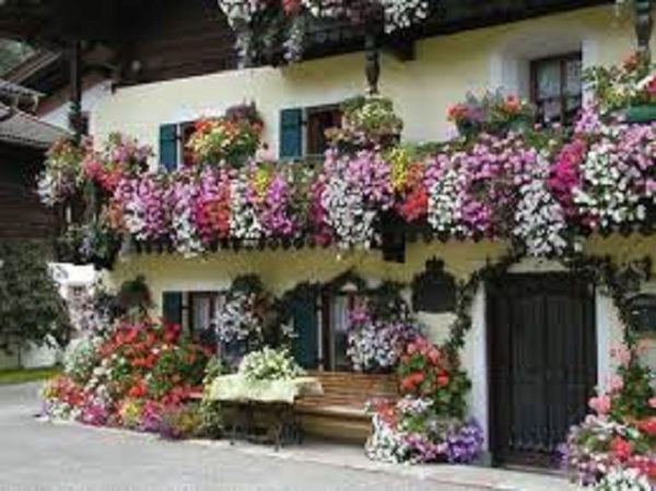 Picture of SALZBURG BALCONY PLANTER