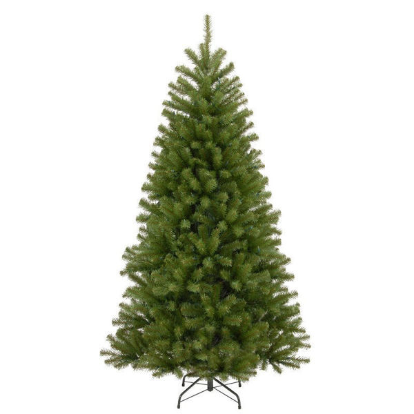 Picture of NORTH VALLEY SPRUCE TREE  - 9FT