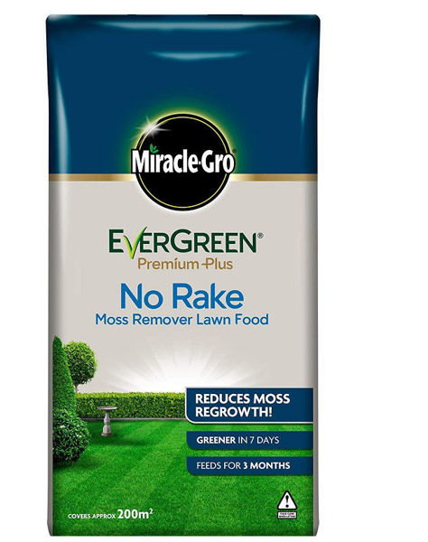 """Picture of 20KG MIRACLE GROW EVERGREEN """"NO RAKE"""""""