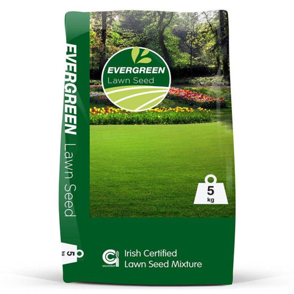 Picture of 5KG EVERGREEN LAWN SEED