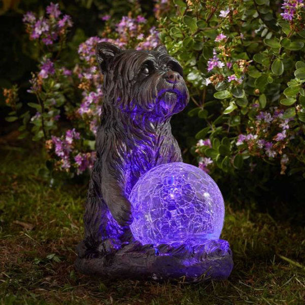 Picture of SOLAR POWERED - MYSTIC DOG