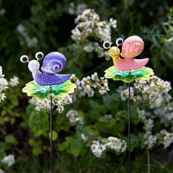 Picture of SNAIL LOONY STAKES